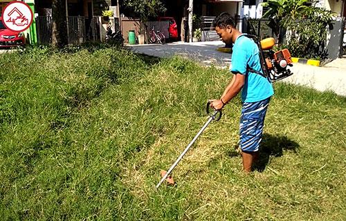 Harga Mesin Potong Rumput Gendong Krisbow